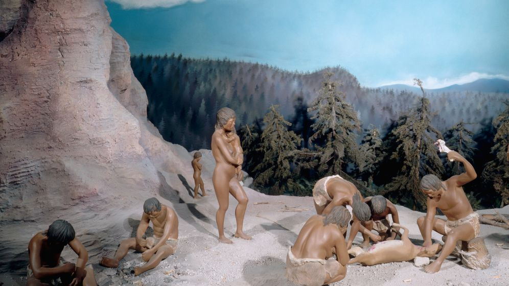 Photo Gallery: Stone Age Eating on the 'Paleo Diet'