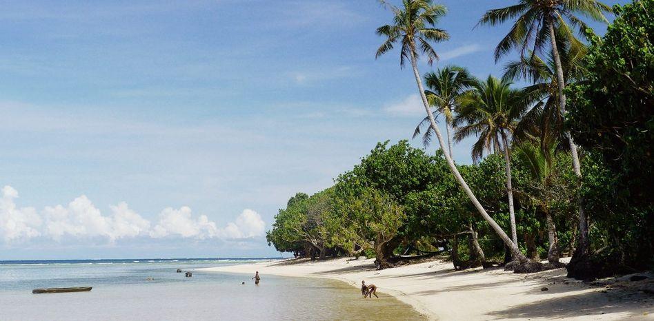 Strand der Südseeinsel Vanikoro