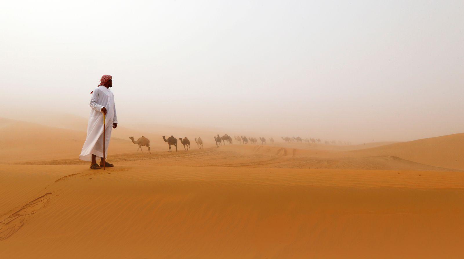 VAE / Wüste