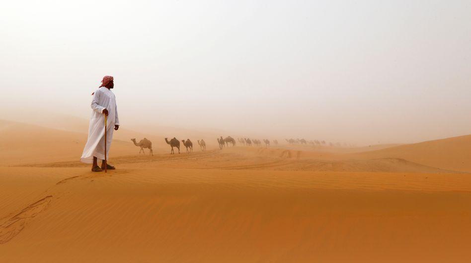 Wüste bei Abu Dhabi (im Dezember 2015): Regen? Eher selten
