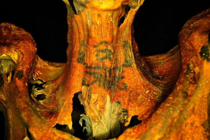 EINMALIGE VERWENDUNG Mumie/ tätowiert