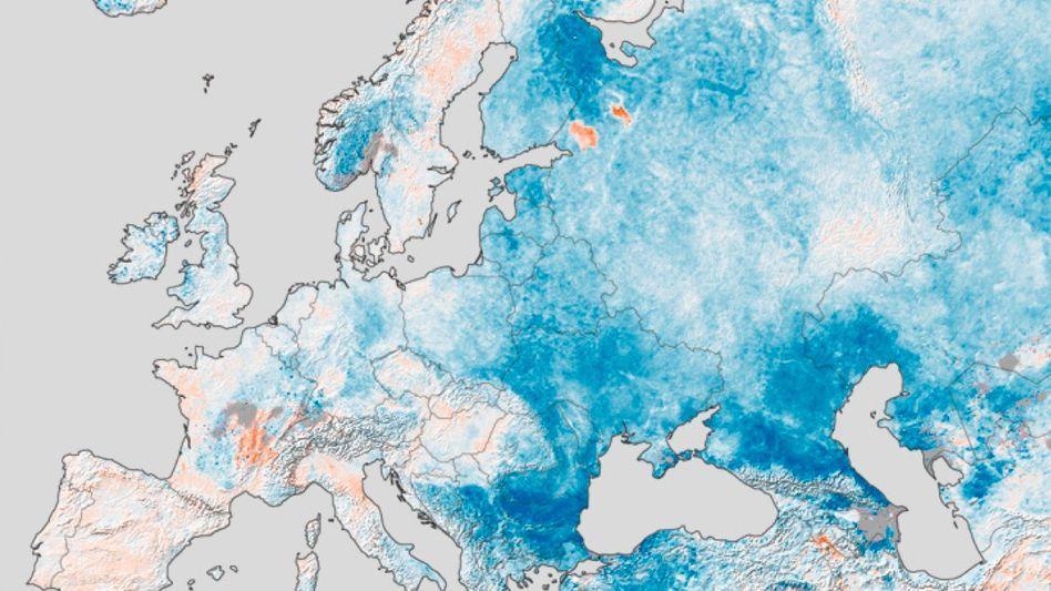 Europa Ende Januar: In blau markierten Regionen lag die Temperatur bis zu 15 Grad unter der Durchschnittstemperatur im gleichen Zeitraum in den vergangenen zehn Jahren