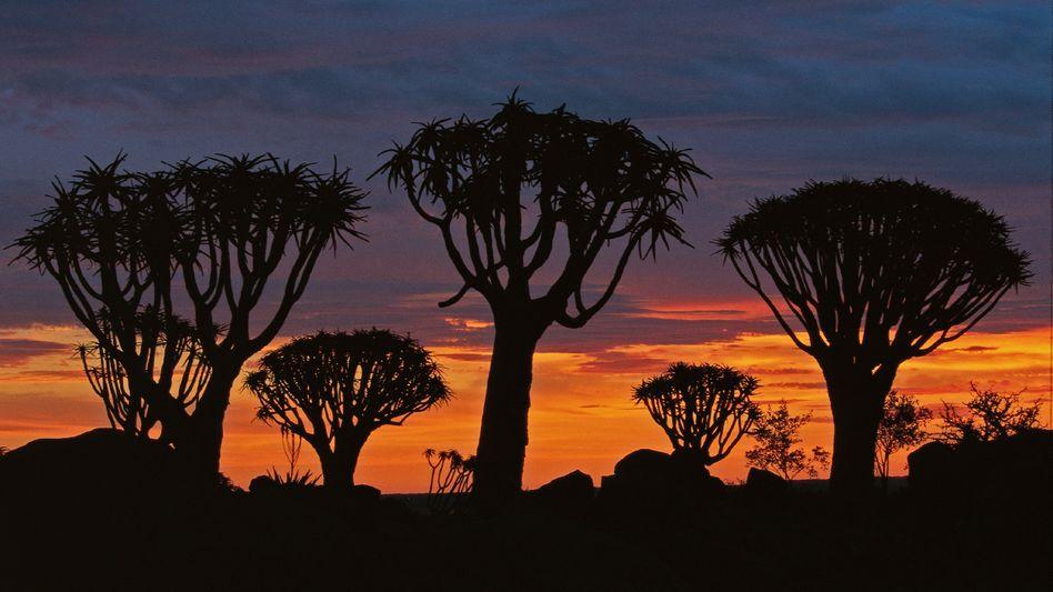 Urlaub: Namibia wird als eines der Reiseziele mit Funklöchern beworben