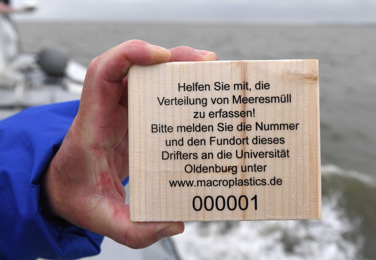 Holzdrifter/ Jadebusen/ Makroplastik