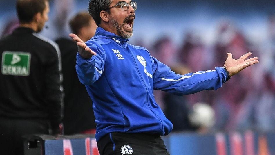 David Wagner übernahm Schalke 04 zu dieser Saison und führte den Vorjahres-14. auf Rang vier.
