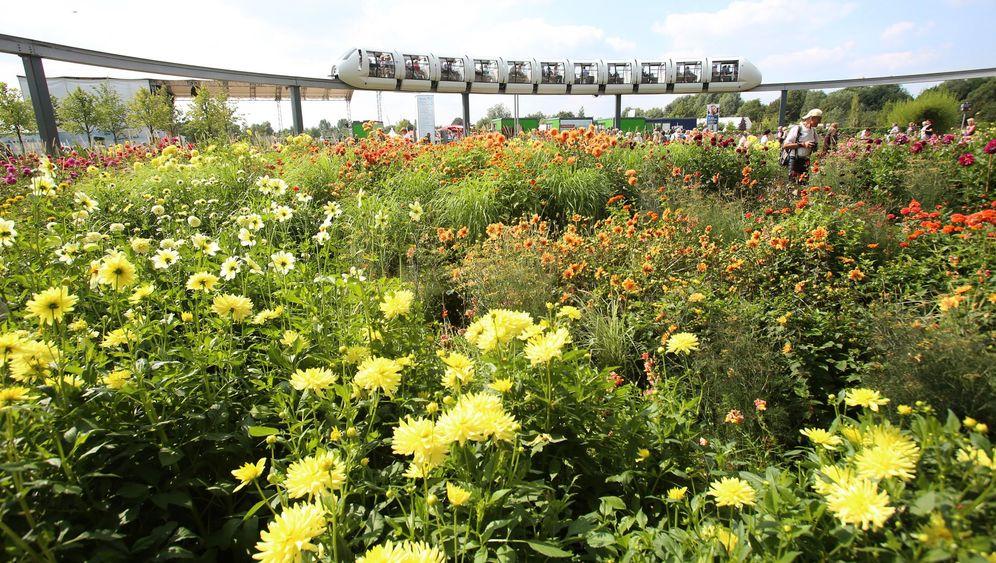 Internationale Gartenschau in Hamburg: Pflanzenschau mit Regenponcho