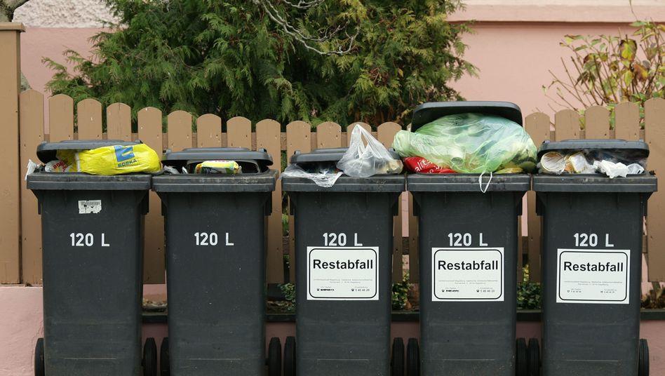 Mülltonnen in Magdeburg: Viel Konsum und viele Singles = mehr Abfall?
