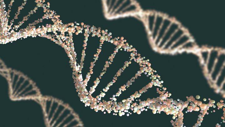 Chemie-Nobelpreis 2015: Die DNA-Reparaturwerkstatt