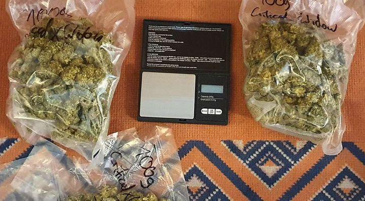 Bei den Razzien beschlagnahmte Drogen