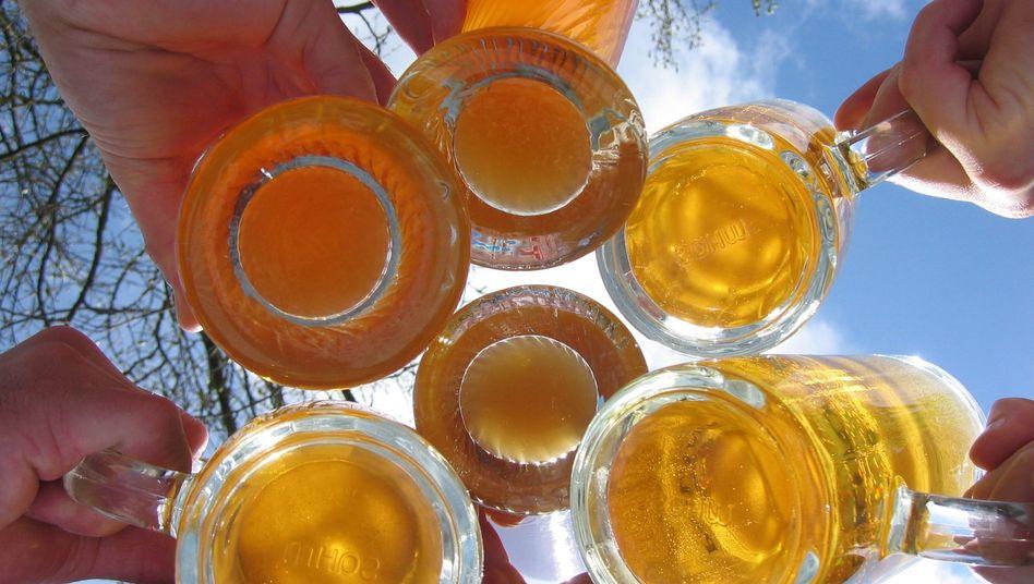 Biertrinker beim Anstoßen: 24 Premiummarken sollen betroffen sein.