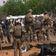 Drei Blauhelmsoldaten bei Anschlag in Mali getötet