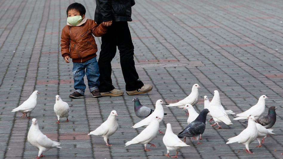 Spaziergang in Shanghai, China (Archivbild von 2013): Die Vogelgrippe ist noch da