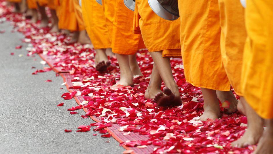 Prozession in Bangkok: Buddhistische Mönche laufen über einen Rosenteppich