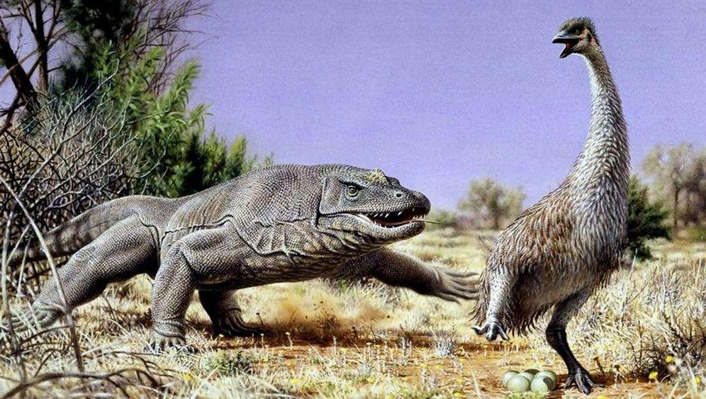 Megafauna: Australiens ausgestorbene Giganten