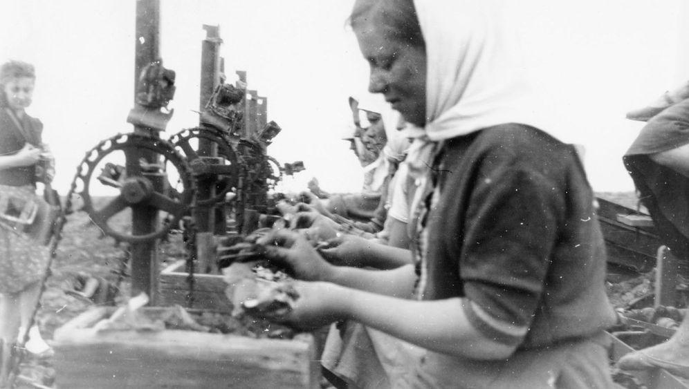 Reemtsmas Zwangsarbeiter: Tabakrausch im Osten