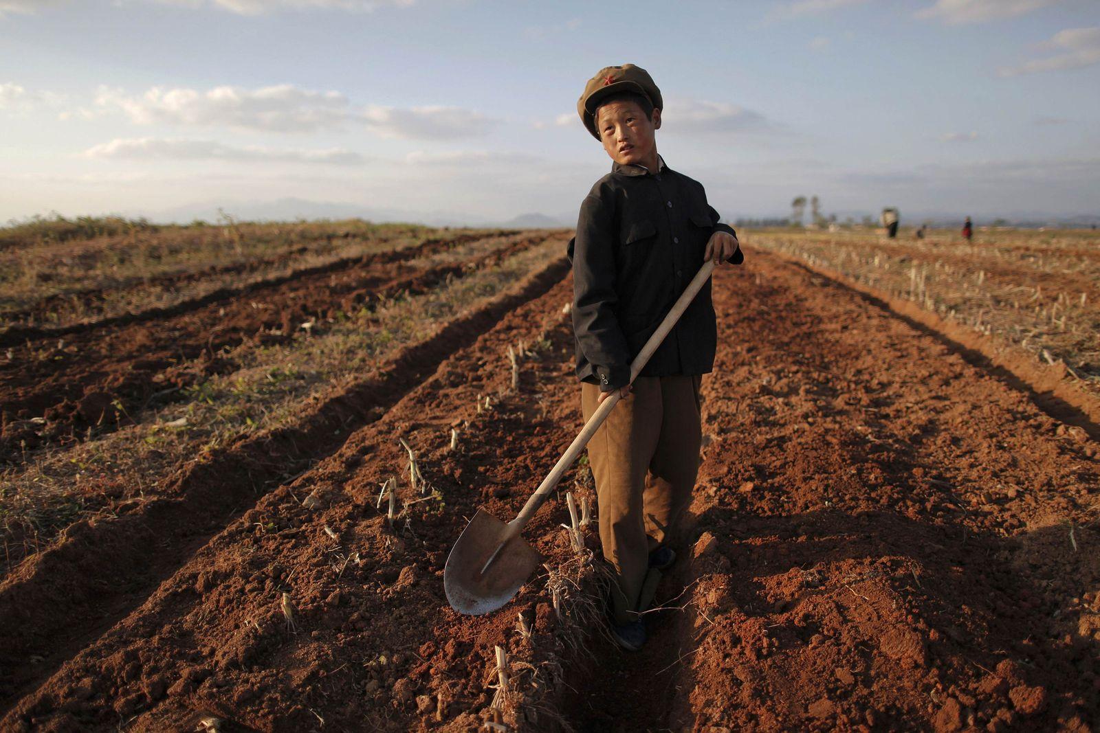 Nordkorea / Landwirtschaft