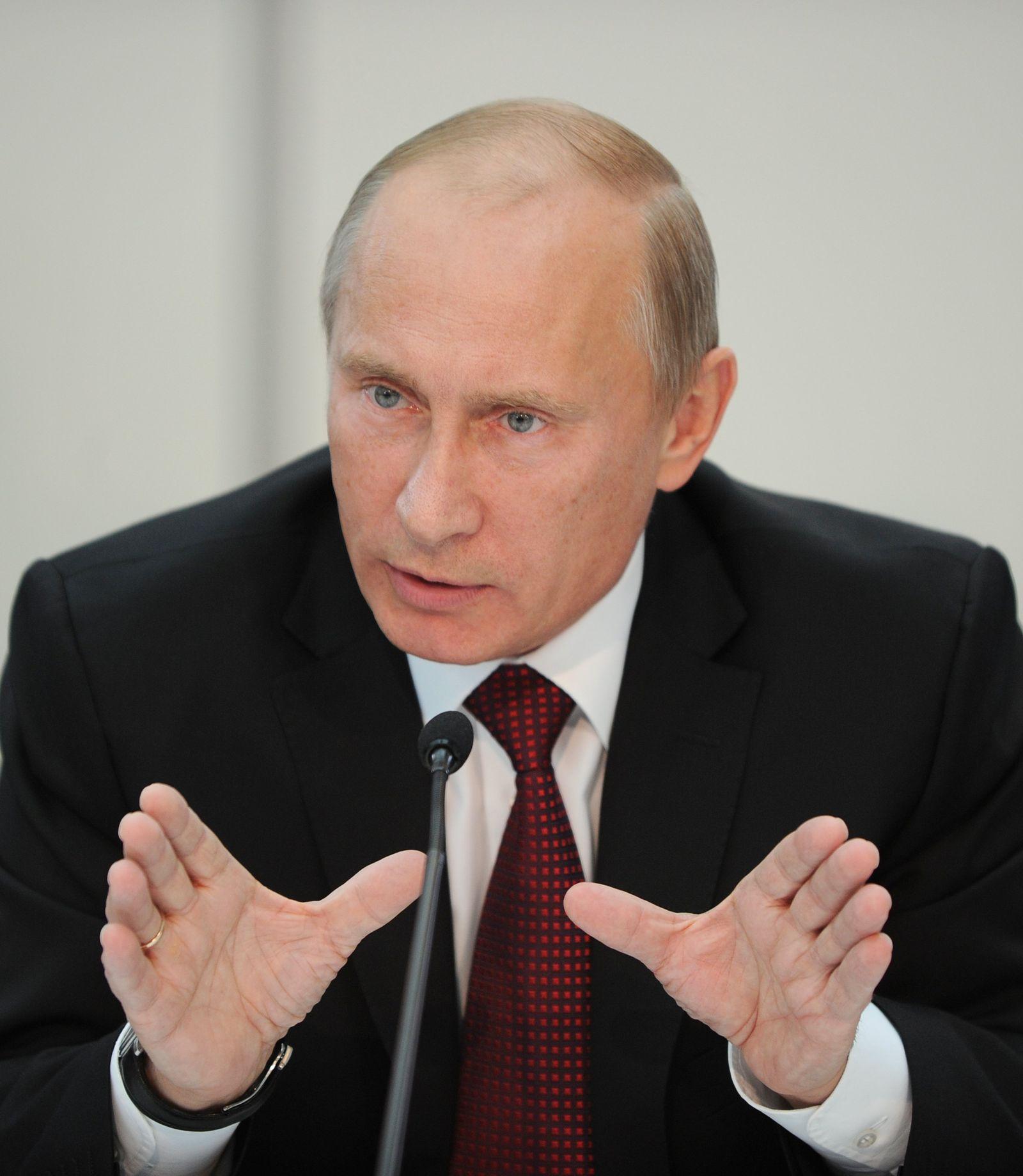 Einiges Russland/ Putin