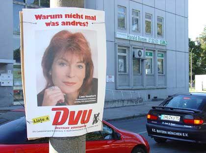 DVU-Wahlplakat in Brandenburg: Die rechtsextreme Partei hat zum zweiten Mal den Einzug in den Potsdamer Landtag geschafft
