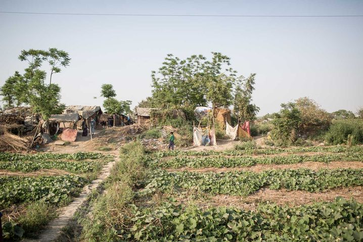 Bauernsiedlung bei Delhi