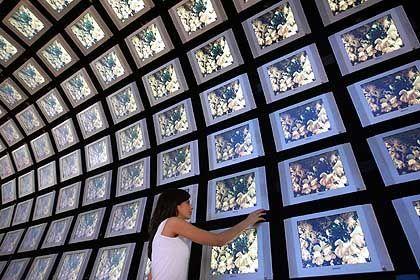 Was guckst Du: Die IFA besinnt sich auf ihr Lieblingsprodukt - den Fernseher