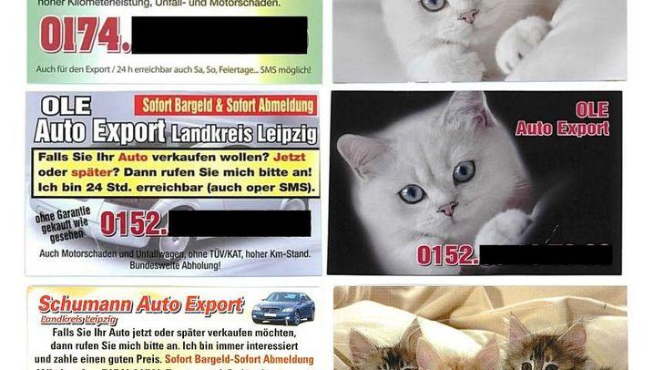 Autokärtchen: Karossen, Katzen, Katalysatoren