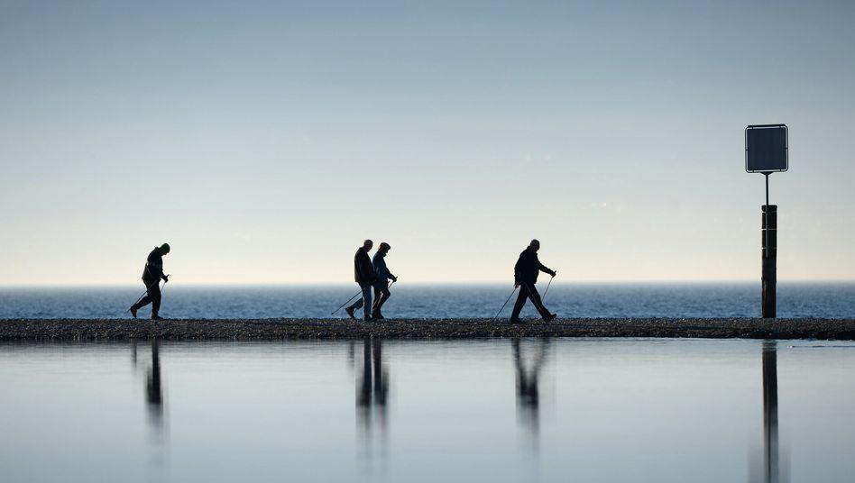 Nordic Walking: Idealer Sport für alle, die schon länger nicht mehr trainiert haben