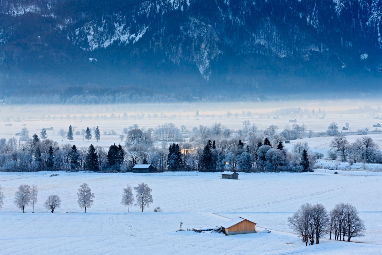 Germany, Bavaria, Murnauer Moos, View of frosty morning