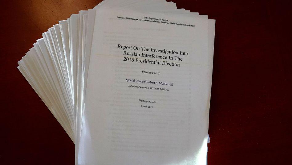 Der Mueller-Bericht