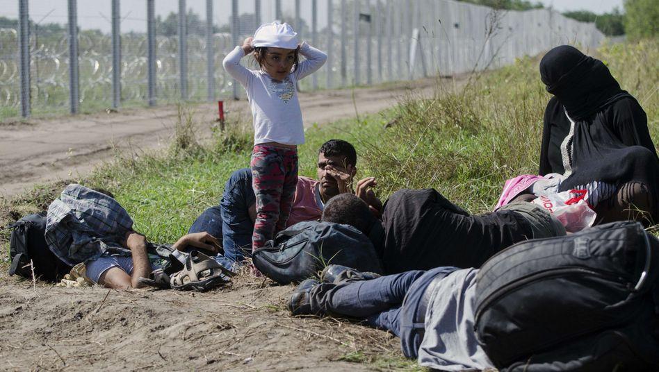 Flüchtlinge am ungarisch-serbischen Grenzzaun: Vucic fordert weniger Anreize