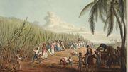 Ein deutscher Kaufmann und Sklavenhändler