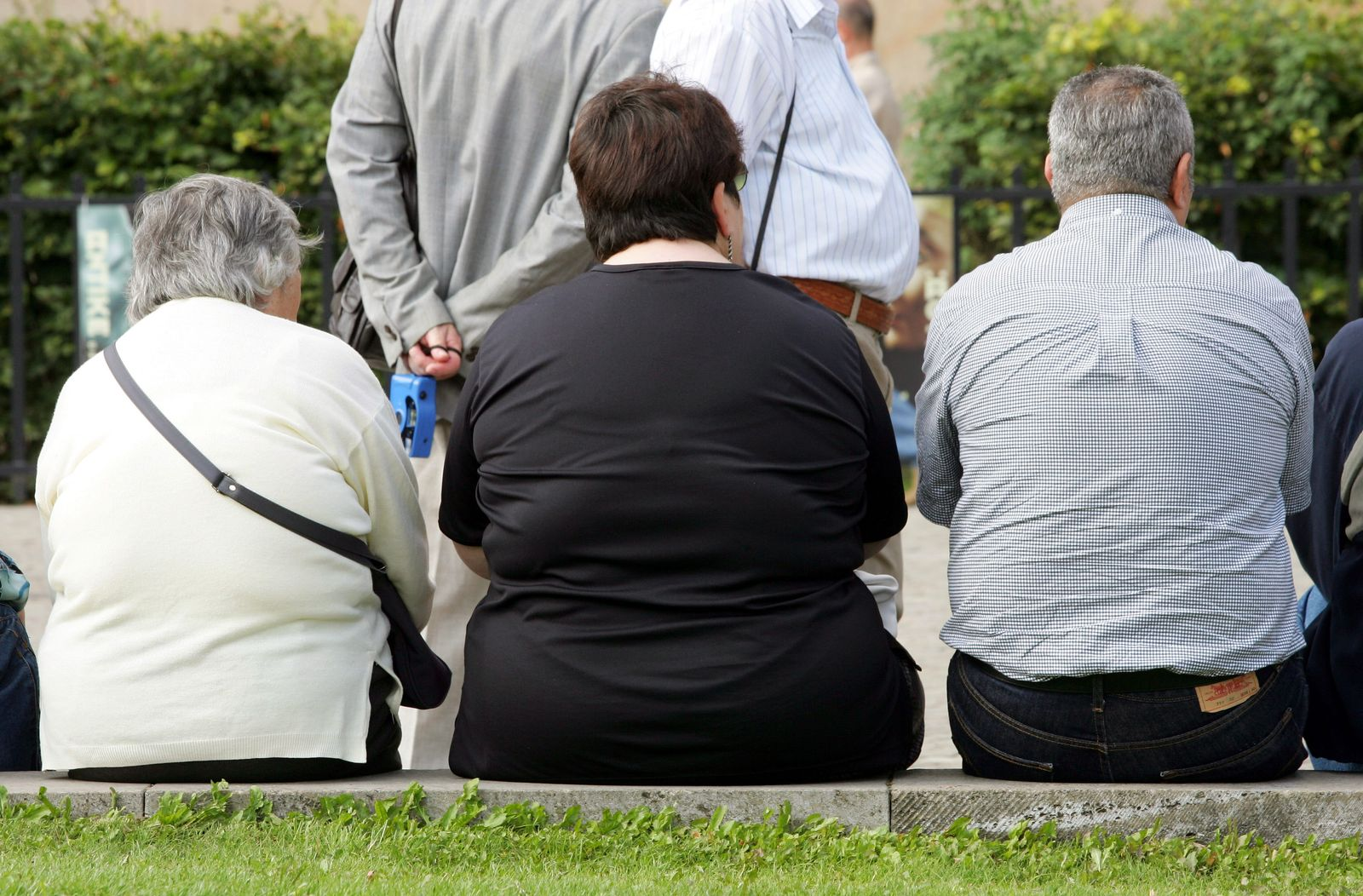 Übergewicht / Adipositas