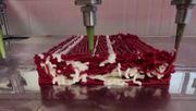 Veganes Steak aus dem 3D-Drucker