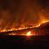 Bolsonaro-Regierung zieht Feuerwehrleute ab