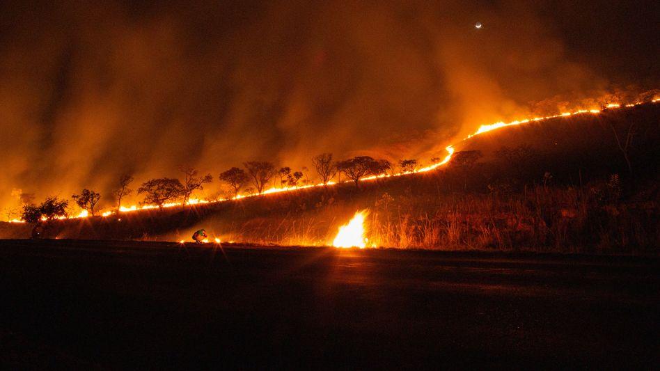 Brand im brasilianischen Nationalpark Chapada dos Veadeiros