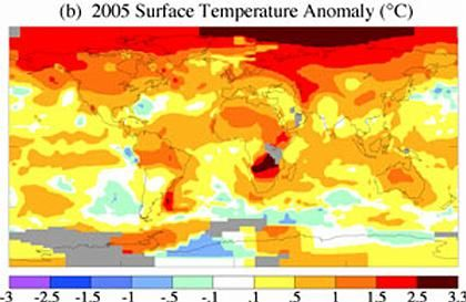 Durchschnittstemperaturen im Jahr 2005: Rote Bereiche zeigen Erwärmung, blaue Felder Abkühlung