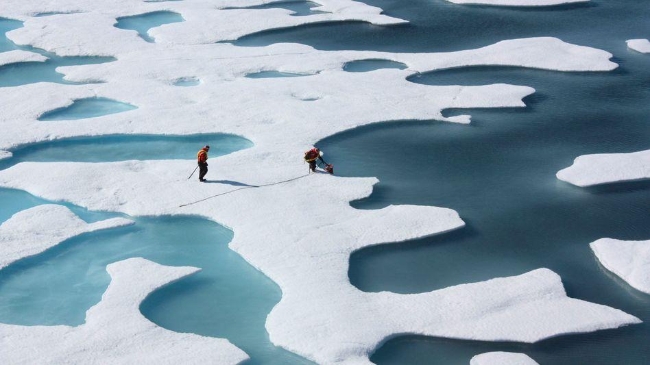 """Polarforscher vor Alaska (im Juli 2011): """"'Schlechte Nachrichten für den Eisbär', so etwas funktioniert nicht"""""""