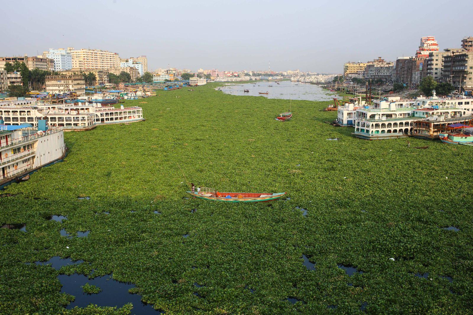 May 16, 2020, Dhaka, Dhaka, Bangladesh: Water hyacinth grows on the Buriganga River, one of the busiest rivers in the wo