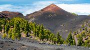 La Palma befürchtet Vulkanausbrüche