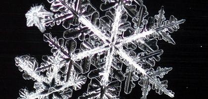 Schneeflocken: Wissenschaftler sind noch nicht einmal in der Lage, etwas scheinbar so Banales wie die Bildung von Eiskristallen zu erklären