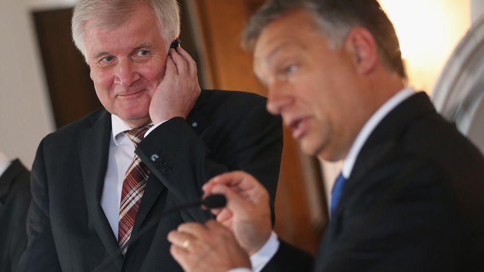 CSU-Klausur mit Orbán: Die Zaunkönige