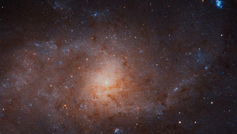 """Das Bild des Dreiecksnebels ist eine Kombination von 54 """"Hubble""""-Einzelaufnahmen"""