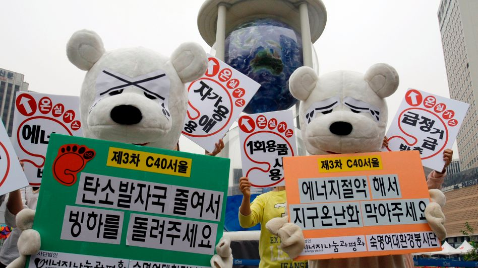 """Protest gegen den Klimawandel in Seoul (2009): """"Wir versuchen, Vorreiter zu sein"""""""