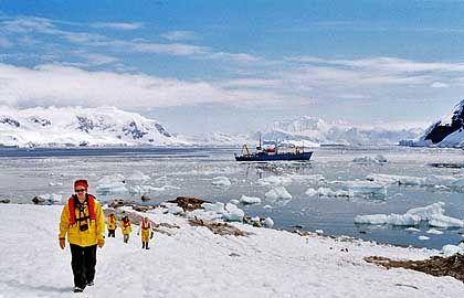 Antarktis-Tourismus: Kreuzfahrt ins Eis