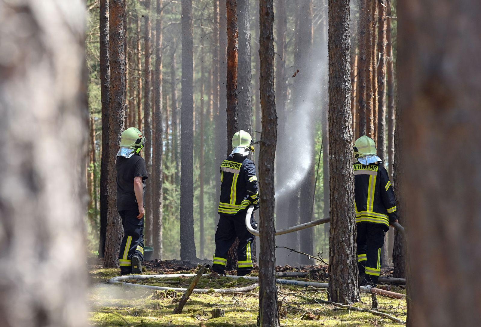 Steigende Waldbrandgefahr