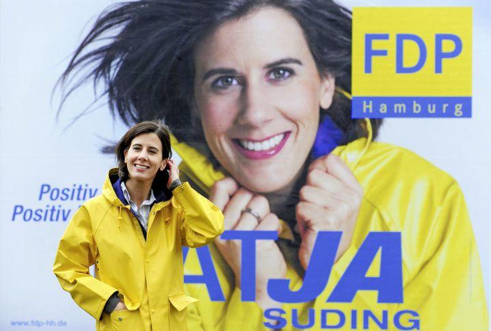 FDP-Plakat mit Suding 2011: Friesennerz und Windmaschine