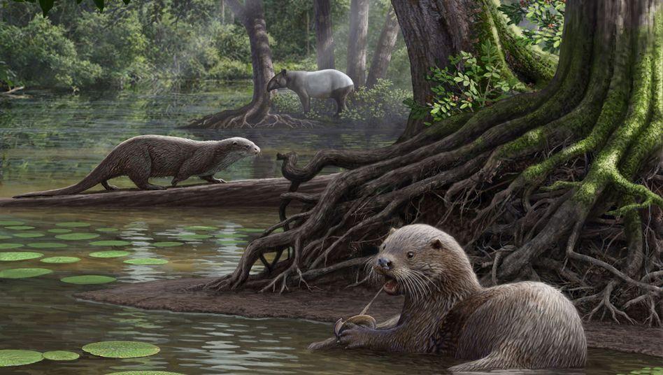 Siamogale melilutra: Otter von Wolfs-Größe
