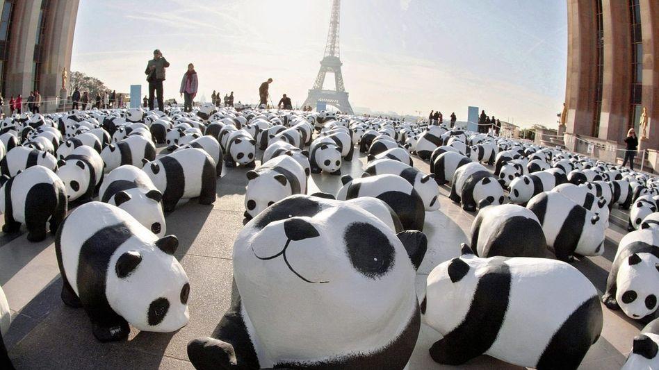 WWF-Aktion in Paris 2008: Nur noch eine Illusion von Hilfe und Rettung?