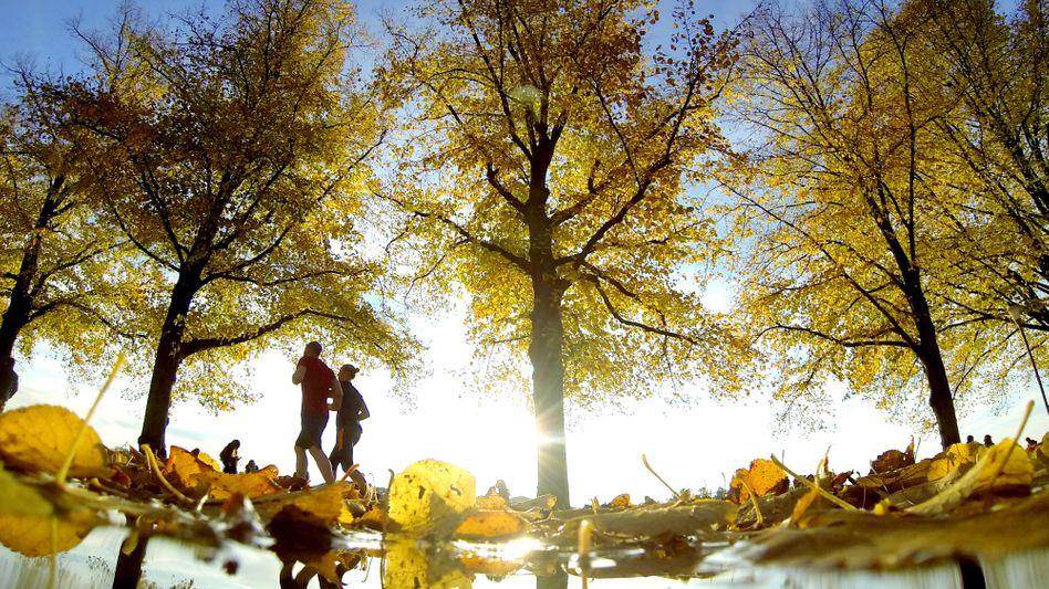 Jogger im Herbst: Weniger ist oft mehr