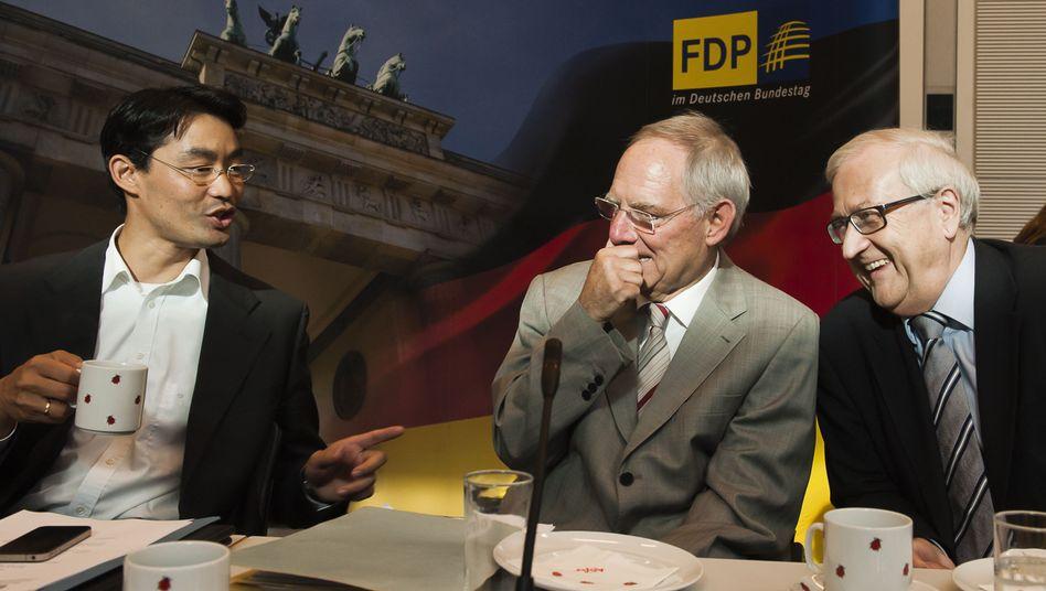 Vizekanzler Rösler, Minister Schäuble, FDP-Fraktionschef Brüderle: Um Ruhe bemüht
