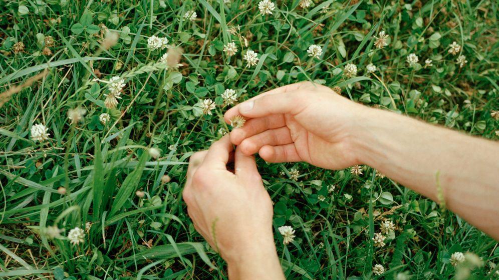 Fotostrecke: Wenn man Blüten nur fühlen und riechen kann